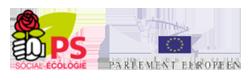 Logo-dsf-def-2015